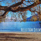 Hello from Queenstown by Curious-Camera