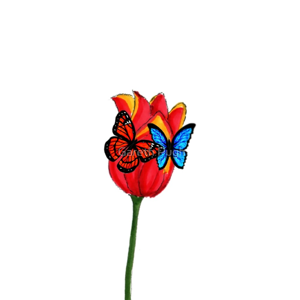 Butterflies on a Tulip by Gareth Pugh
