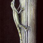 Lined-Leaftailed Gecko by Djjacksonart