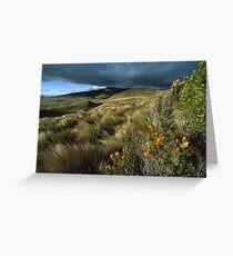 Lake District Evasion ( UK) Greeting Card