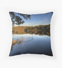 Morning Reflections 3 Throw Pillow