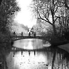 The shadow bridge by julie08