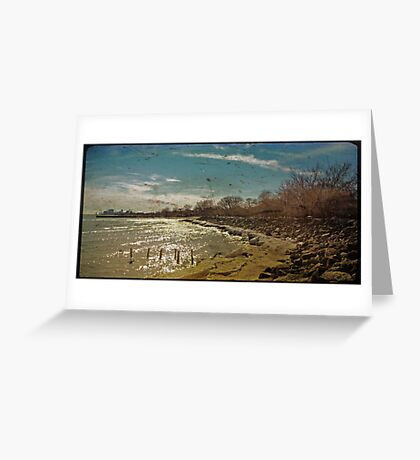 a lonely day in february  Greeting Card