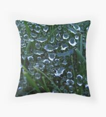 Spiders Dream Throw Pillow