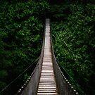 Suspension Bridge Vancouver by Luke Baker