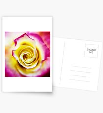 A Touch of Pink  Postcards
