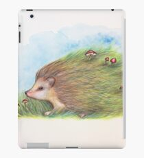 Whimsy Hedgehog iPad Case/Skin