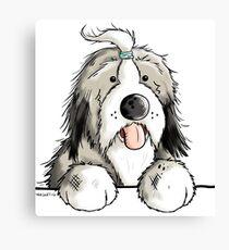 Happy Bearded Collie Canvas Print