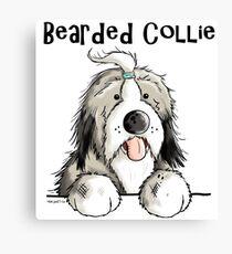 Fluffy Bearded Collie Canvas Print
