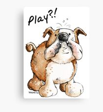 Play?! English Bulldog Canvas Print
