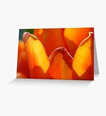 Fire flower Greeting Card
