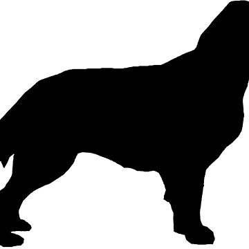 flat coated retriever silhouette by marasdaughter