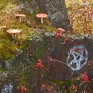 Pan was here  by SphericSenseS