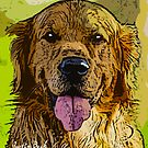 Golden-Retriever-Justin-Beck-Picture-2015093 by Justin Beck