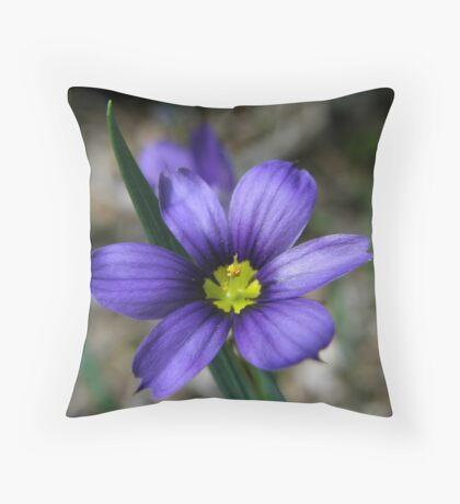 Blue-Eyed Grass Flower Throw Pillow