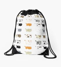 Fat Cats Drawstring Bag
