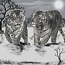 Snow Tigers Grey Justin Beck Picture 2015087 by Justin Beck