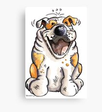 Laughing English Bulldog Canvas Print