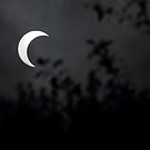 Crescent Sun Eclipsed by the Moon by DARRIN ALDRIDGE