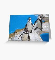 Penguin Conga Line Greeting Card