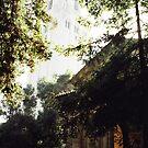 Stanford 1 by JMerriman