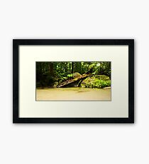 Wurrmbu Creek Framed Print