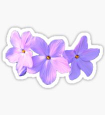 Alpha Delta Pi Flower Sticker