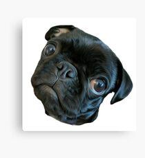 Winnie the Pug face Canvas Print