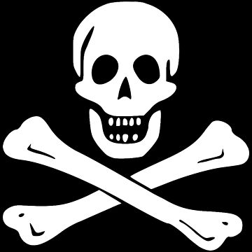 Edward England Pirate Flag by kayve