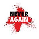 Never Again by Alex Preiss