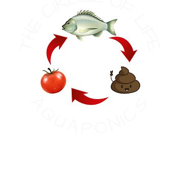 Aquaponics The Circle of Life Fish Poo Food Funny T-Shirt by cosfrog