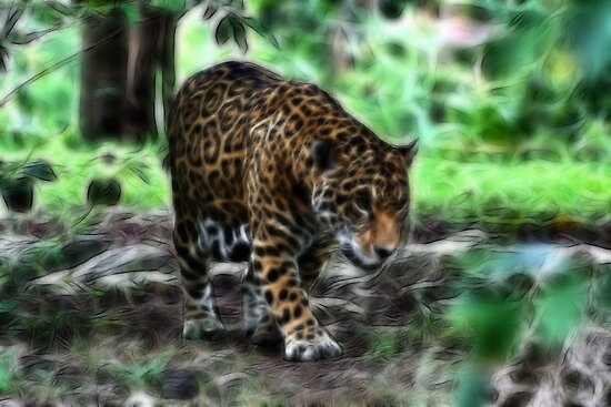 Quot Fractal Jaguar Quot By Teresa Zieba Redbubble