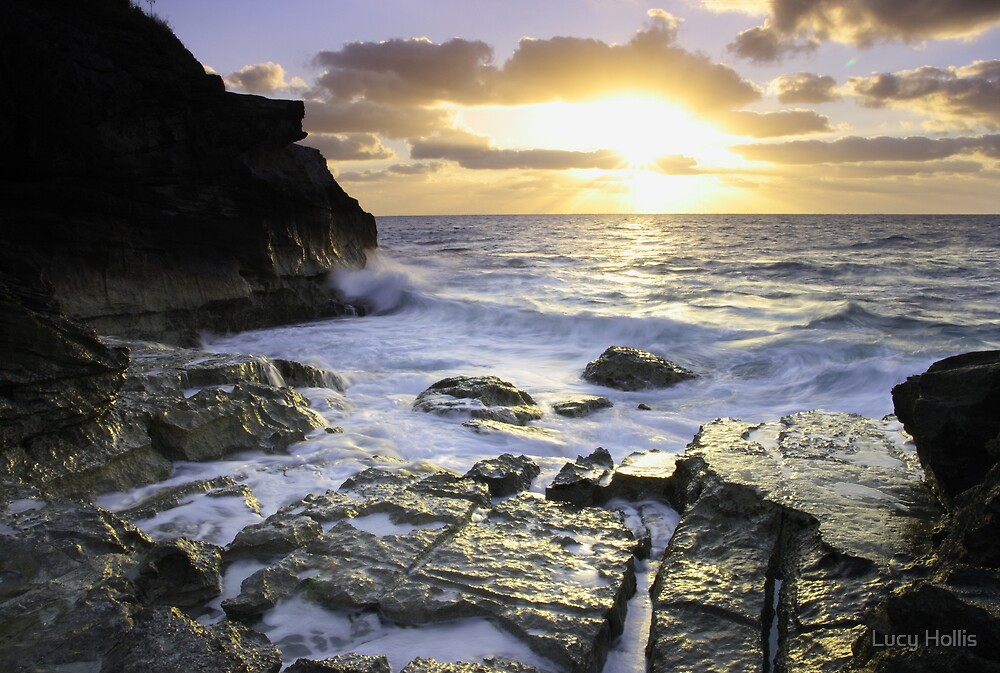 Bermuda's Rocky Shore by Lucy Hollis