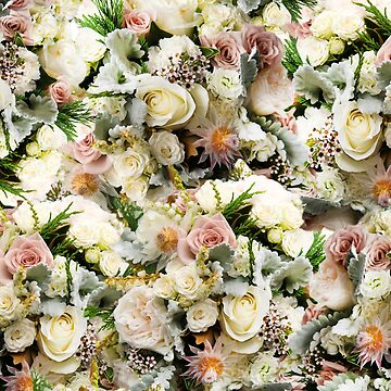 White Rose Floral Pattern by KolJoseph