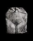 iPad Case. Virginitea. by Alex Preiss