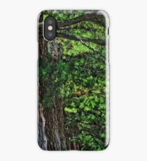 Love of Nature iPhone Case/Skin