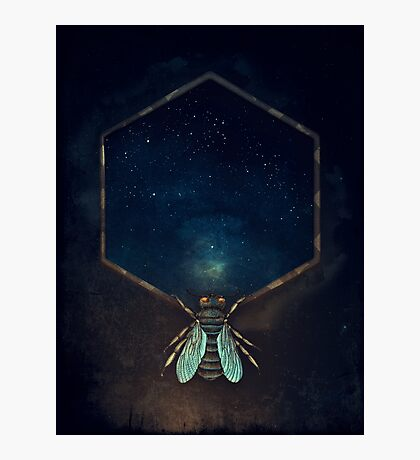 Bee Universe Photographic Print