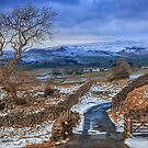 Winskill Stones above Langcliffe in the Yorkshire Dales by RamblingTog