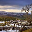 Winskill Stones above the village of Langcliffe near to Settle in the Yorkshire Dales by RamblingTog