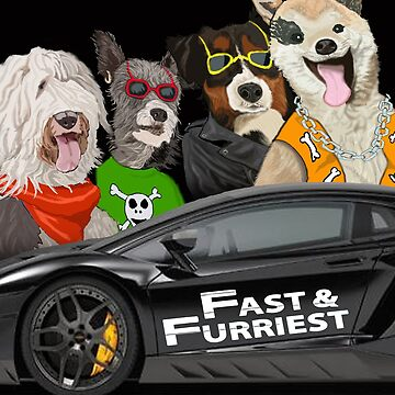 Fast and Furriest by Gmagennis
