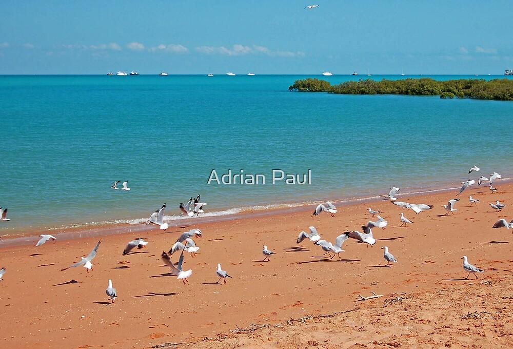 Town Beach and Roebuck Bay, Broome, Western Australia by Adrian Paul