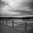 B&W Lilydale Lake by Joel McDonald
