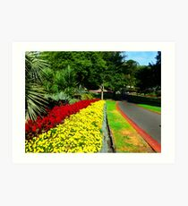 Fitzroy Gardens, Melbourne Art Print