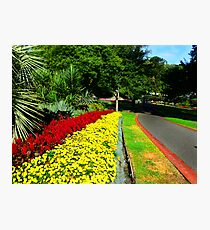 Fitzroy Gardens, Melbourne Photographic Print