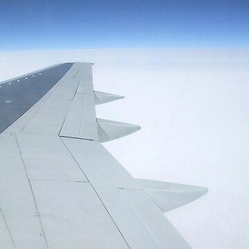 Aeroplane Wing by donnachapman