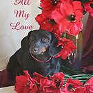 All My Love, Rudy by Lori Walton
