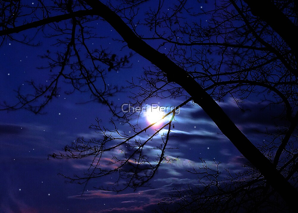Moon so Bright by Cheri Perry