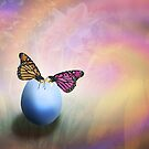 About Life, Birth and Rebirth by Johanne Brunet