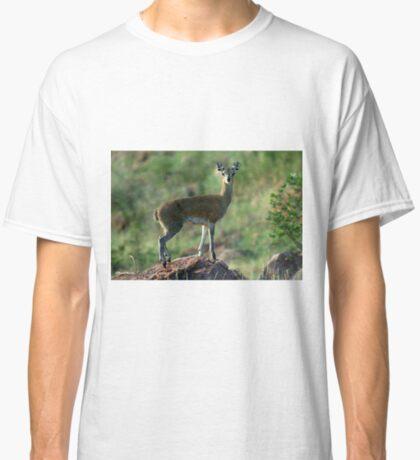 THE BALLERINA - *KLIPSPRINGER – Oreotragus oreotragus* Classic T-Shirt