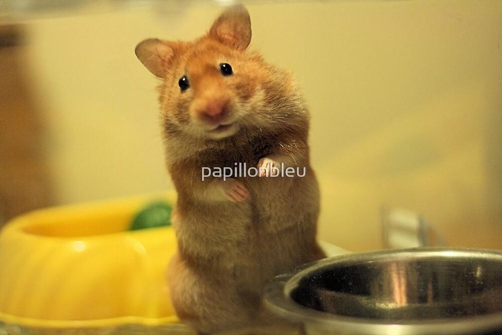 Feed Minnie by Pamela Jayne Smith